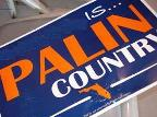 palin1