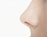nose-smell