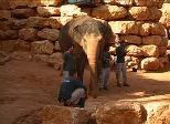 israel-biblical-zoo