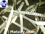 chabad-pamphlet-shredded-2
