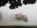 fog-at-ben-gurion