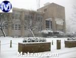 bmg-snow