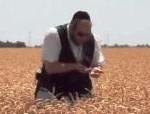 matzoh-harvest