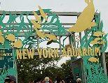 new-york-aquarium1