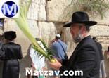 rabbi-p-lipschutz