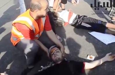 egypt-fake-protest