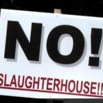 shalchthoiz-protest