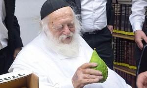 rav-chaim-kanievsky6