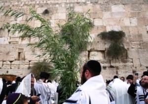 hoshanah-rabbah-kosel