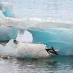 glacial-melting