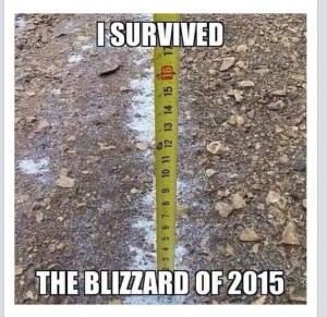 blizzard-of-15