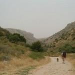 israel-national-trail