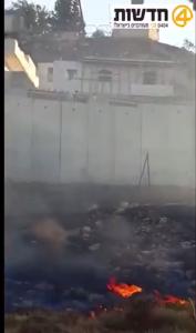 Palestinian arsonists