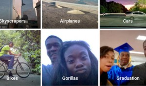 gorillas google