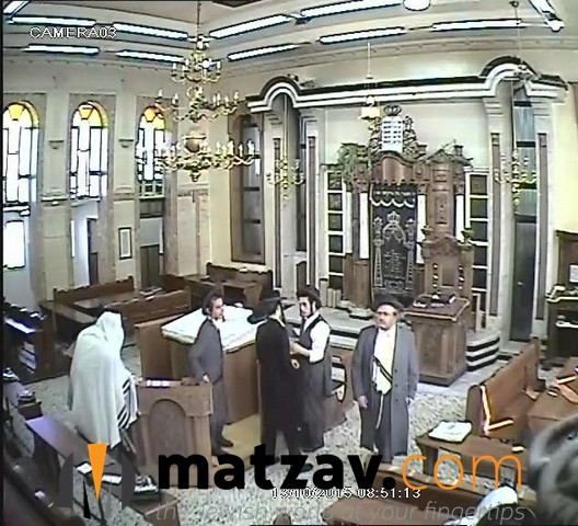 krishevsky (12)
