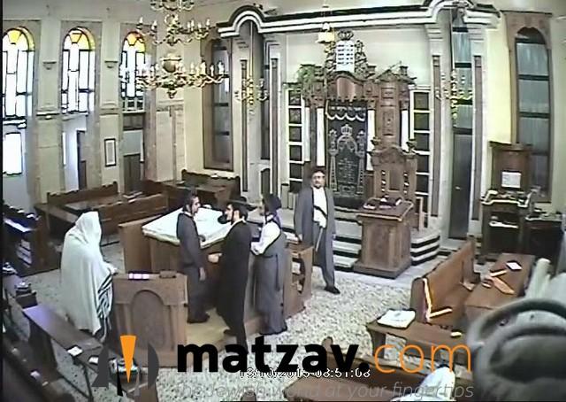 krishevsky (8)