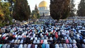 muslims har habayis
