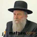 rav Moshe Shapiro