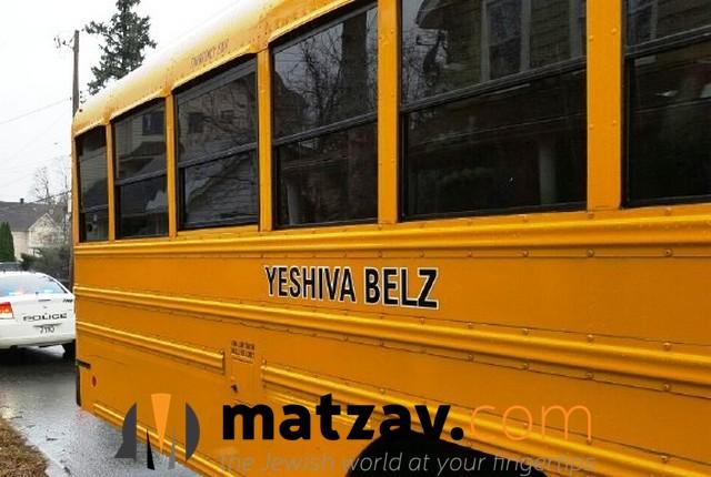 belz (2)
