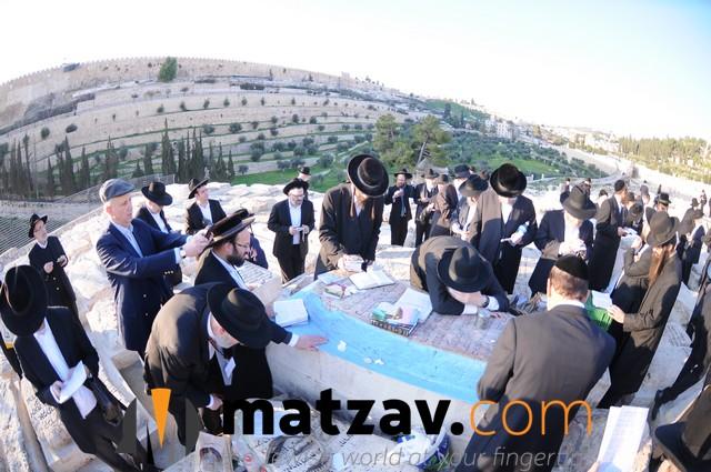 Har Hazeisim Tour Image 3