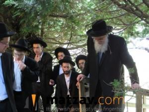 Rav Yisroel Belsky (125)