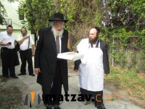 Rav Yisroel Belsky (171)