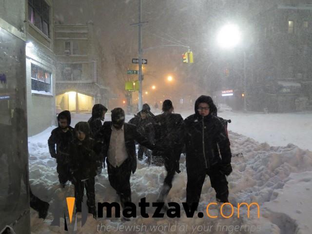 snow (101)