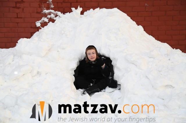 snow (120)