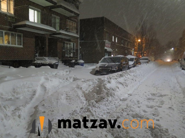 snow (142)