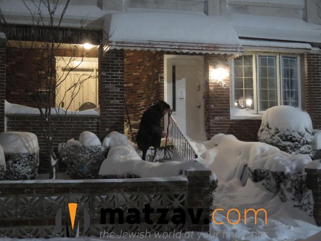 snow (143)