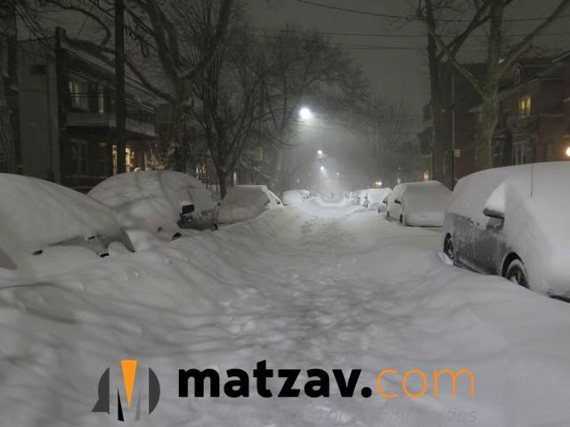 snow (81)