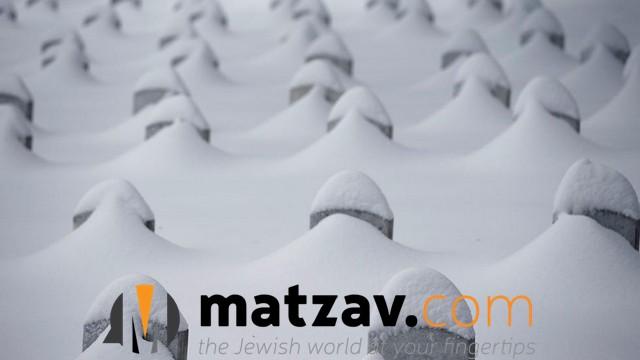 snow jonas (171)