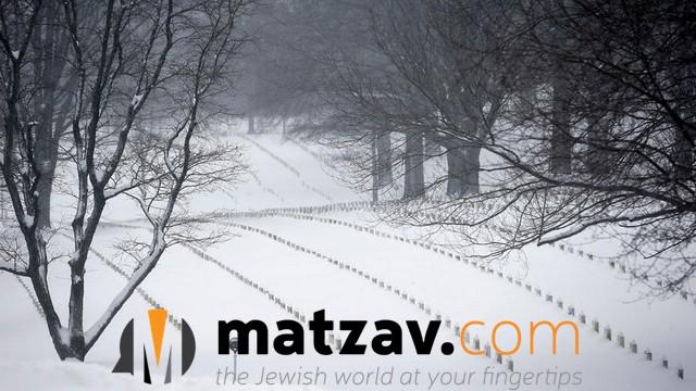 snow jonas (172)