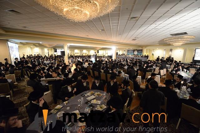 Crowed (4)