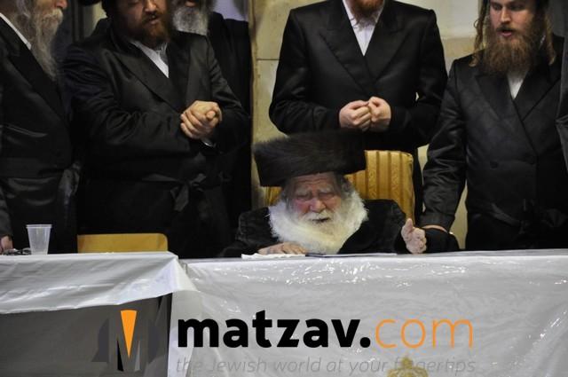 Erlauer Rebbe (1)