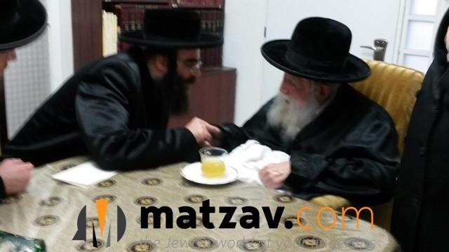 Erlauer Rebbe (100)