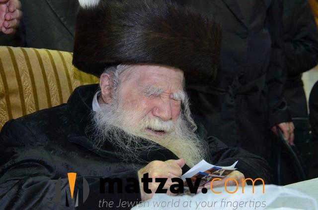 Erlauer Rebbe (121)