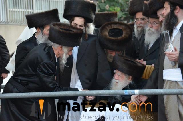 Erlauer Rebbe (122)