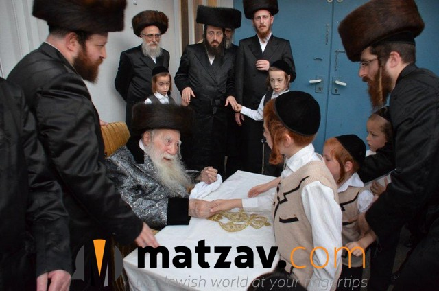 Erlauer Rebbe (123)