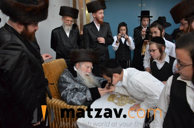 Erlauer Rebbe (124)