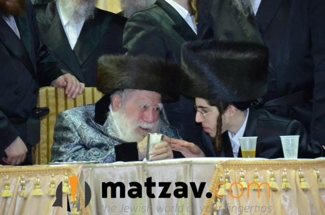 Erlauer Rebbe (128)