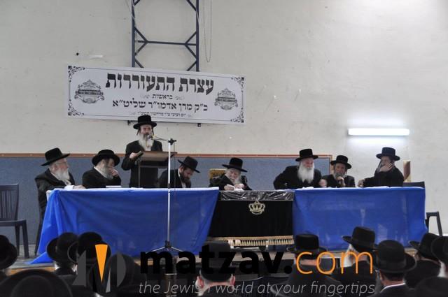 Erlauer Rebbe (142)