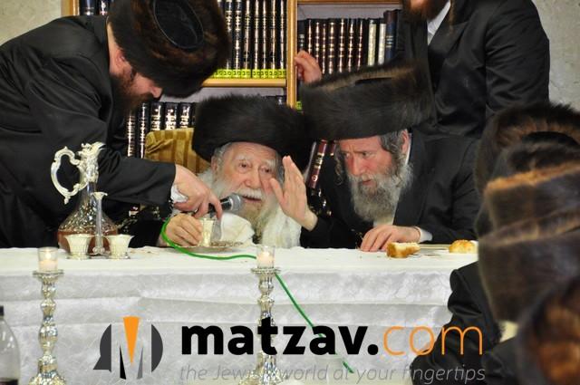 Erlauer Rebbe (16)
