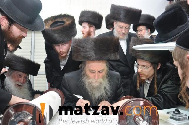 Erlauer Rebbe (161)