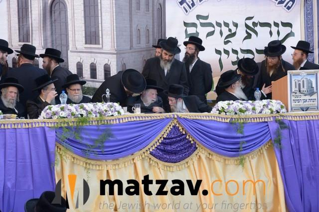 Erlauer Rebbe (164)