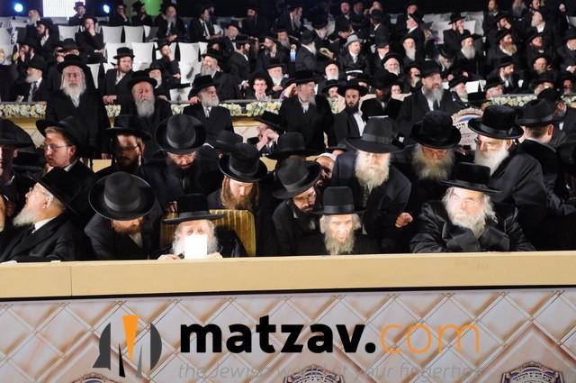 Erlauer Rebbe (177)