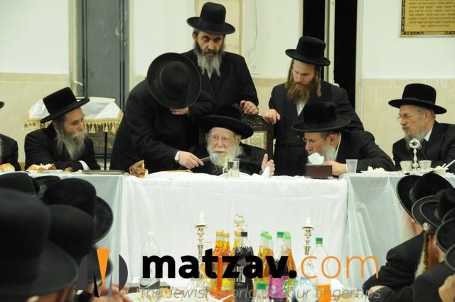 Erlauer Rebbe (182)