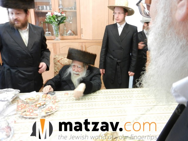 Erlauer Rebbe (192)