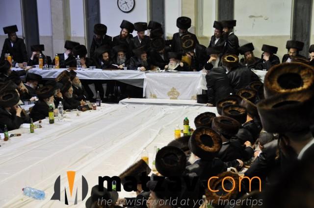 Erlauer Rebbe (2)