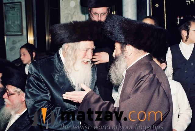 Erlauer Rebbe (211)